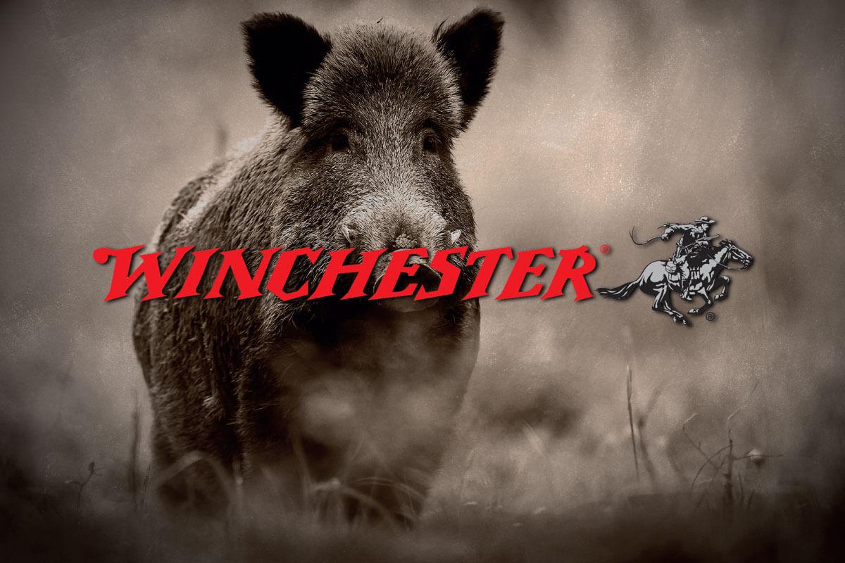 Winchester International